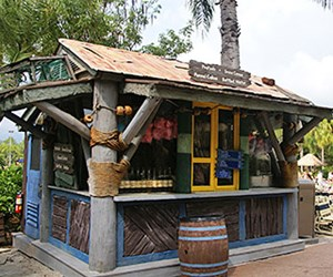 Typhoon Lagoon Funnel Cakes