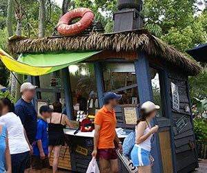 Typhoon Lagoon Mini Donuts